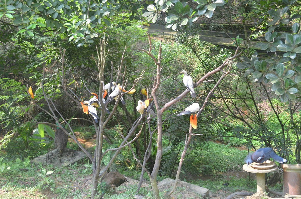 kuala_lumpur_bird_park_birds
