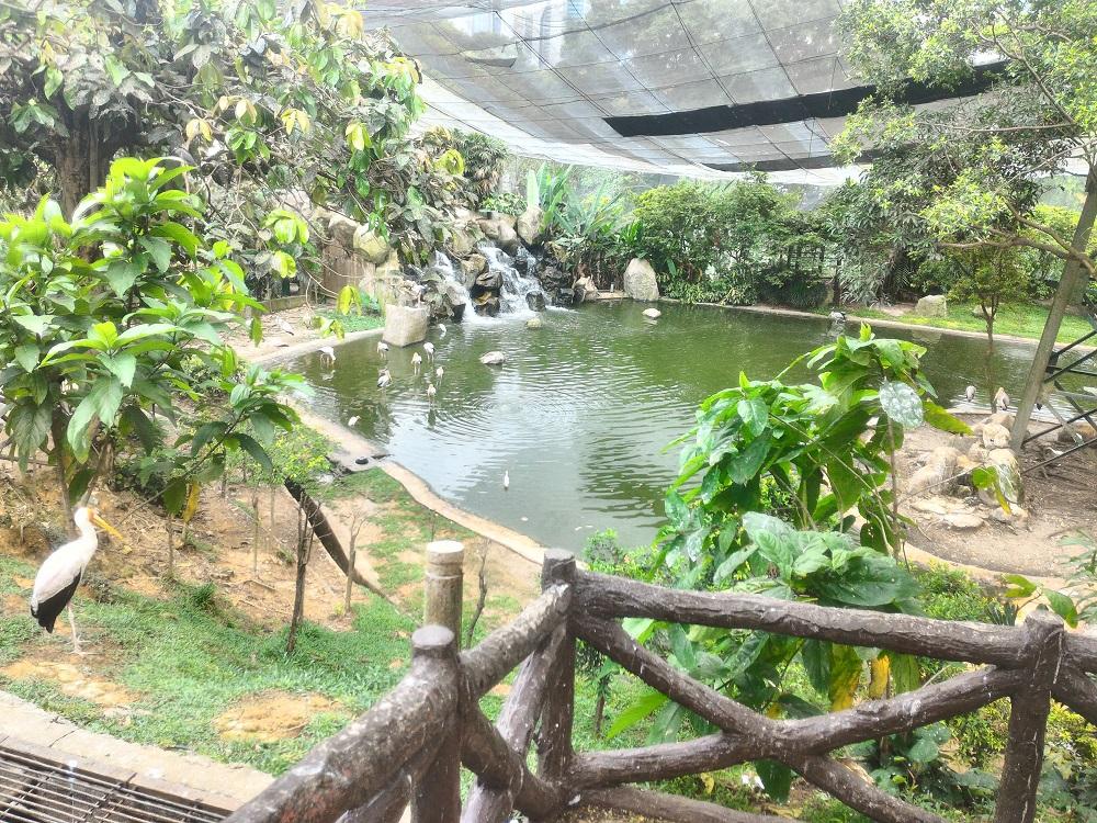 kuala_lumpur_birdpark_lake